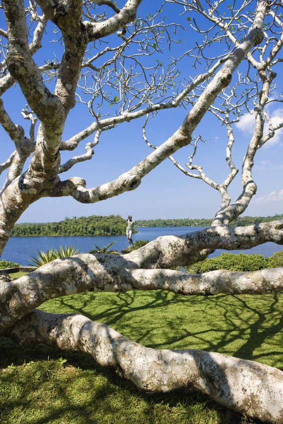 Lunuganga Estate was the country home of the renowned Sri Lankan architect Geoffrey Bawa.