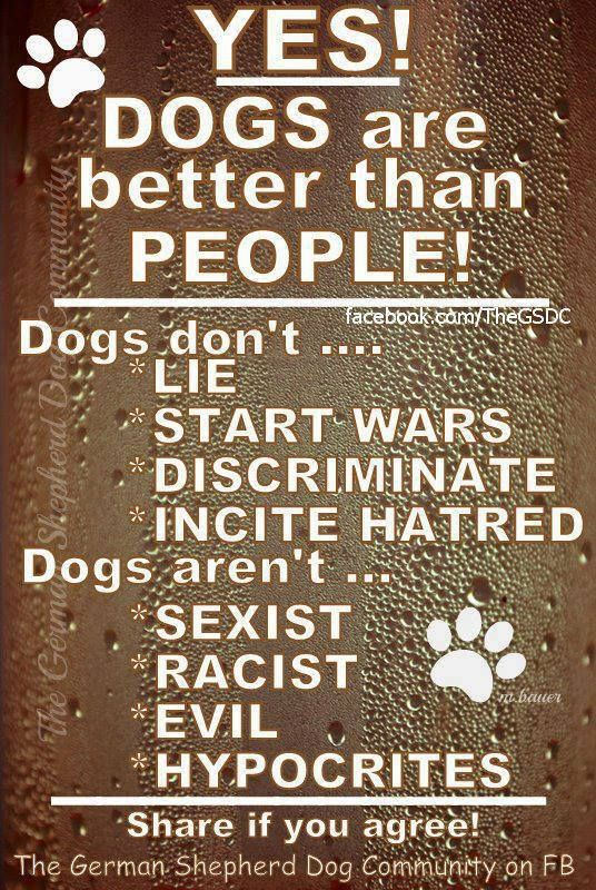 Yes! So true! Dogs are the only creature who loves you more than he does himself. Love your furbaby xx