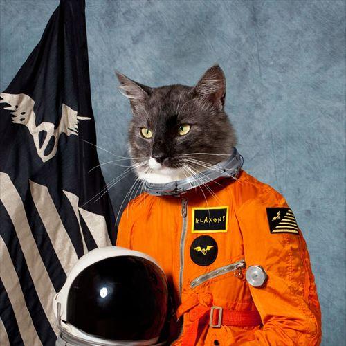 "/// Klaxons ""Surfing the void"" #album #cover #cat #nasa #klaxons"