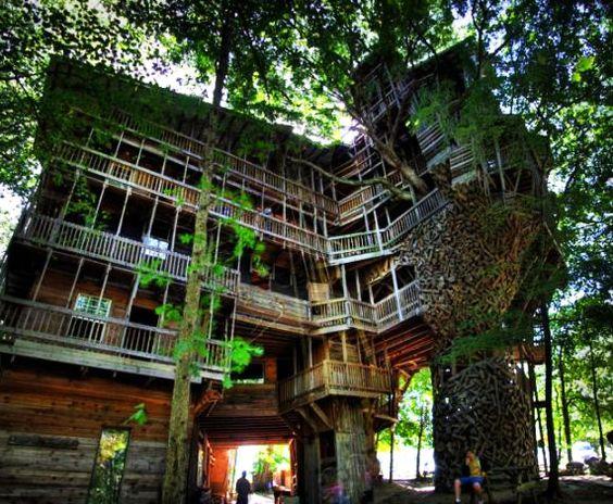 Para que uma casa na árvore se vc pode ter uma mansão? rs