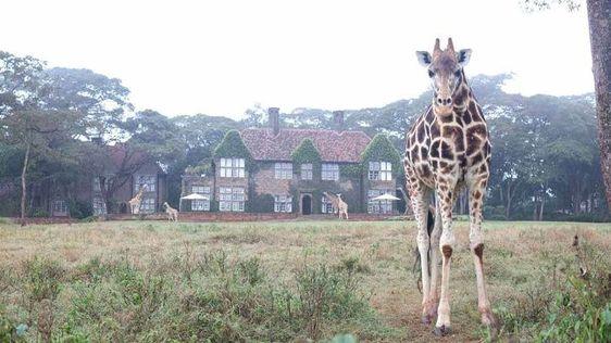 21 απίστευτες φωτογραφίες από ξενοδοχείο που πάντα θέλατε να μείνετε (Μέρος 1ο)