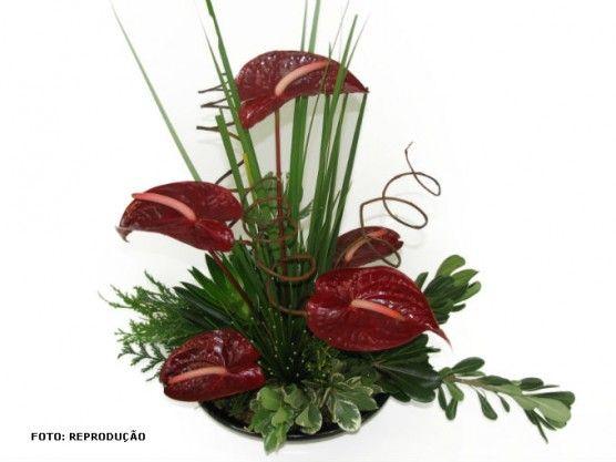 Arranjos Florais Com Anturios Pesquisa Google Arranjos De