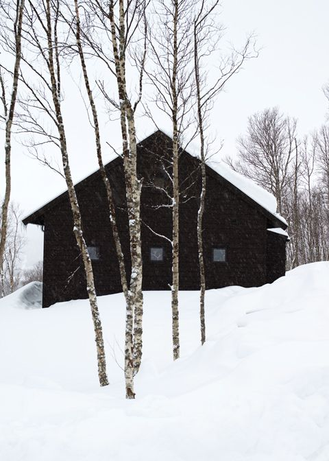 """""""Go often to the house of a friend for weeds soon cover the path."""" ~ Scandinavian Proverb. I <3 Scandinavian Hospitality. I wanna live in Canada or Maine or Greenland or Iceland or Scandinavia!!!!!!"""