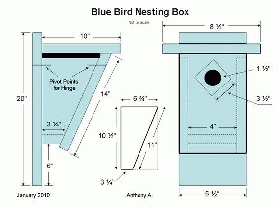 Eastern Bluebird House Plans Bluebird Nest Box Plans