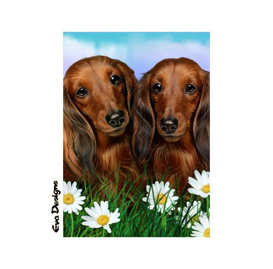 Long Haired Dachshund Dogs Daisies Gift Mini Art Print Card