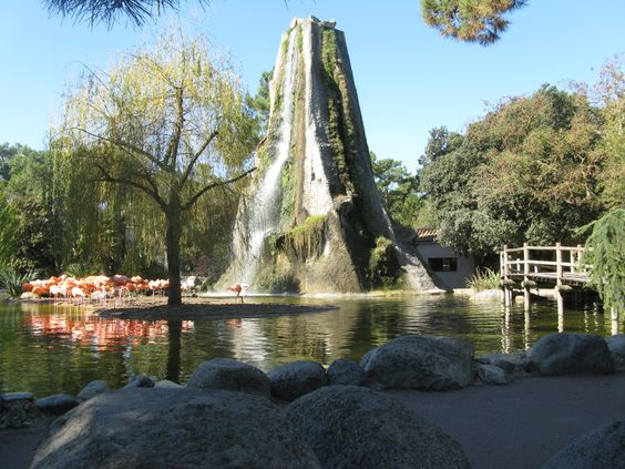 Rocher des flamants roses du zoo de La Palmyre | Pays Royannais Charente-Maritime Tourisme #charentemaritime | #zoo | #LaPalmyre | #animaux