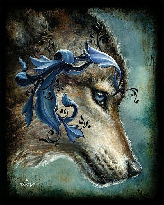 Pic de / of @PetraBentele: #Lobo / #Wolf #Belleza / #Beauty #Nobleza / #Nobility #LoboProtegidoYA / #KeepWolvesListed