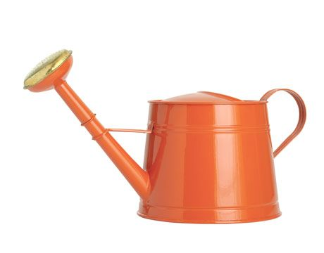 Garden tools home goods watering can 0510 460 360 for Gardening tools list with pictures