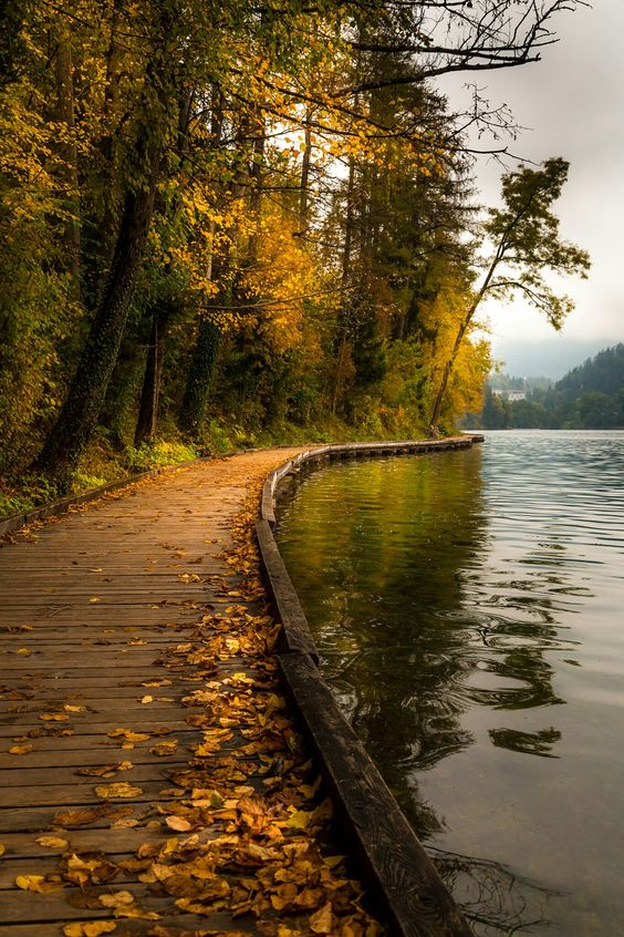 A walk in autumn beside Lake Bled (Slovenia) | by Jakob Noc