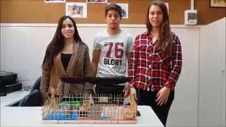 Estudis professionals Sagrat Cor Sarria - YouTube