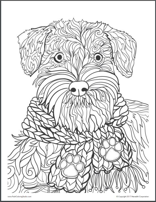 20 Animal Coloring Pages From Realistic To Whimsical Dog