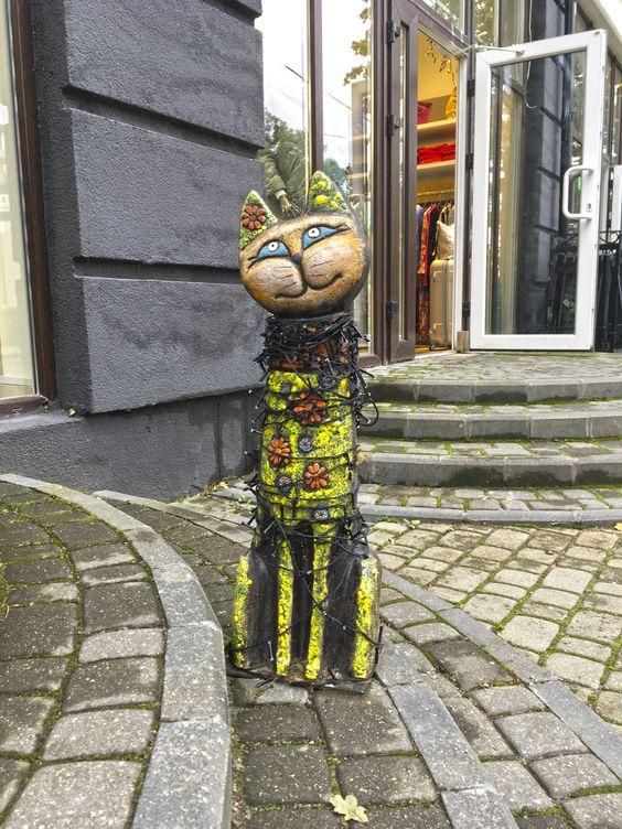 На улицах Светлогорска можно встретить не только мохнатых котиков. Фото Жени Шведы