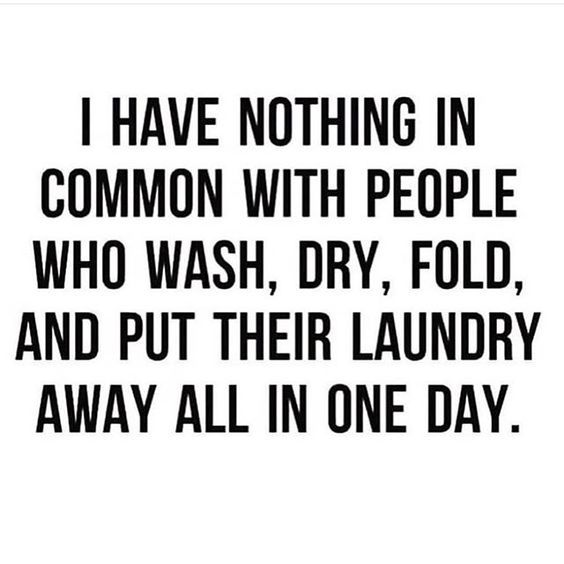 32 Hilarious Life Quotes You Ll Love And Share Funny Quotes Fun Quotes Funny Snarky Quotes