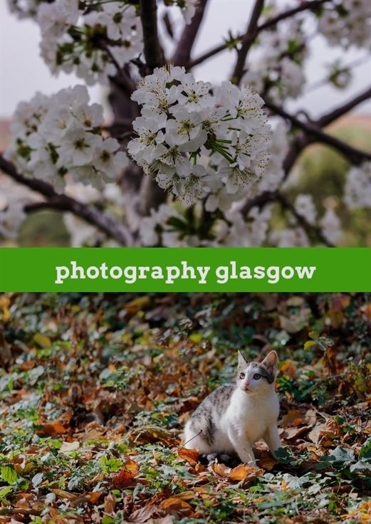 Photography Glasgow 25 20181203232503 46 Photography 8 Bit Vs 16 Bit Barnes A Photography For Dummies Photography Order Form Photography And Videography