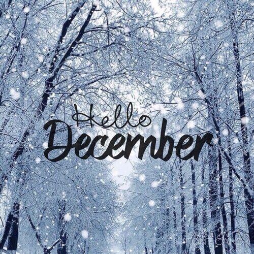 Hello December #Christmas&winter❄