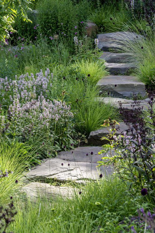 Der Garten Ist Unser Sehnsuchtsort Stilvolles Design Einfach Gepflanzt Stilvolles Design Einfach Gepflanzt Naturnaher Garten Garten Garten Pflanzen
