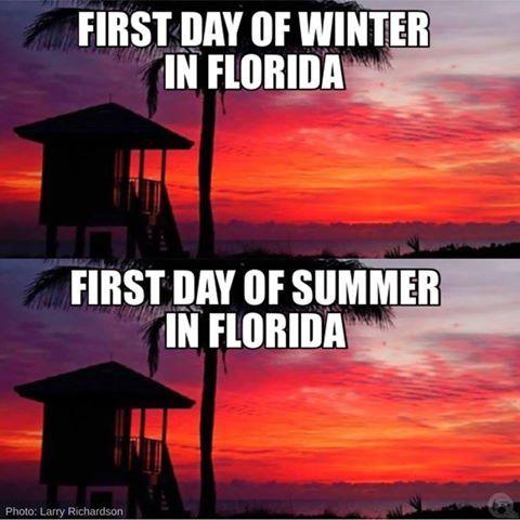 Florida Memes's photo.