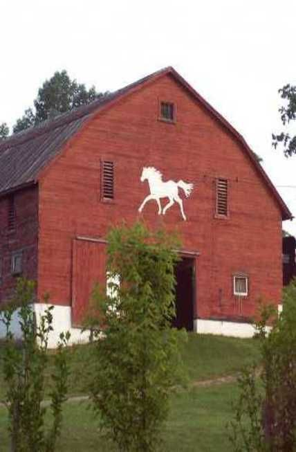 Always love a traditional red barn and the horse painted on the side makes it even more desirable.