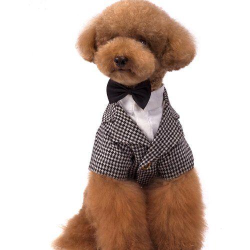 Chidori Geshe Fancy Bow Tie Shirt For Cute Dog Dress Pet