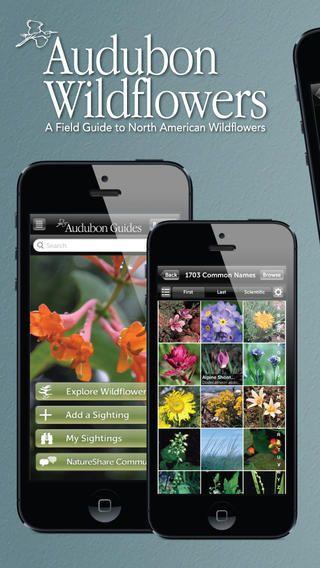 Audubon Wildflower Guide $4.99