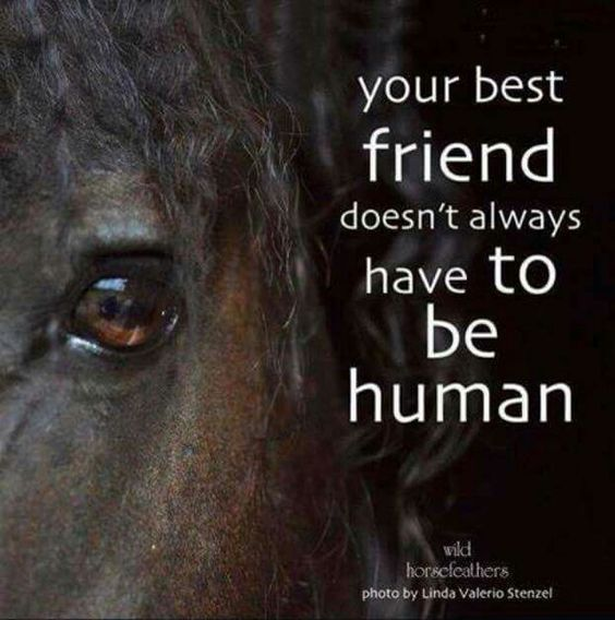 Agree!: