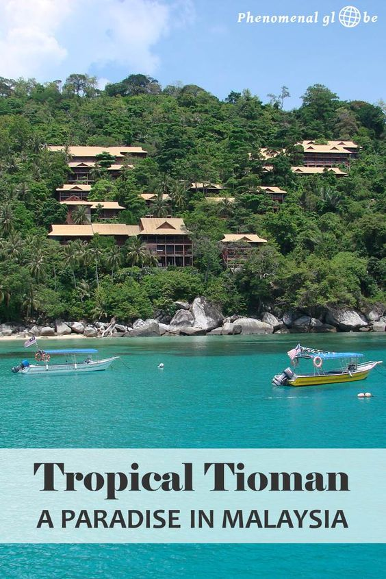 Pulau Tioman is a tiny tropical island about 32 km off the Southeastern coast of Peninsular Malaysia, with a beautiful clear ocean, amazing coral and creepy giant lizards!