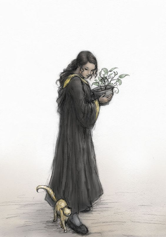 Hufflepuff by ejbeachy | If I weren't a Slytherin I'd want to be a Hufflepuff, and this picture is why.