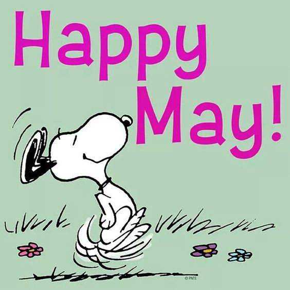 HAPPY MAY  everyone  Dc1965dec0a203ae04e280a6bc8b3dae