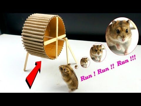 How To Make A Hamster Wheel Easy From Cardboard Diy Hamster Toy