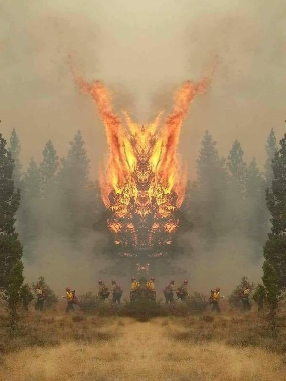 Mirrored images of California firefighters. Anyone else see the dragon? #funny #meme