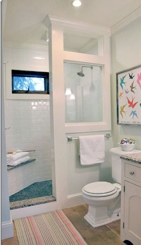 Bathroom , Good Small Bathroom Design Ideas : Small Bathroom Design Ideas With Glass Wall In The Walk In Shower With Traditional Toilet And Laminate Wood Flooring And Birds Wall Hanging Picture