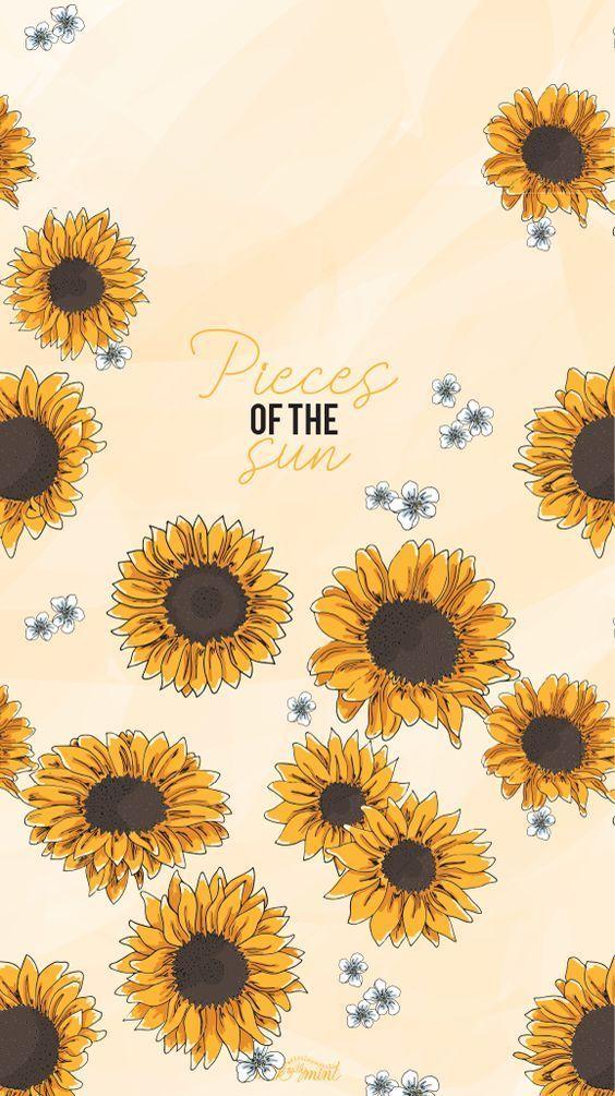 Aesthetic Yellow Tumblr Con Imagenes Girasoles Fondos De