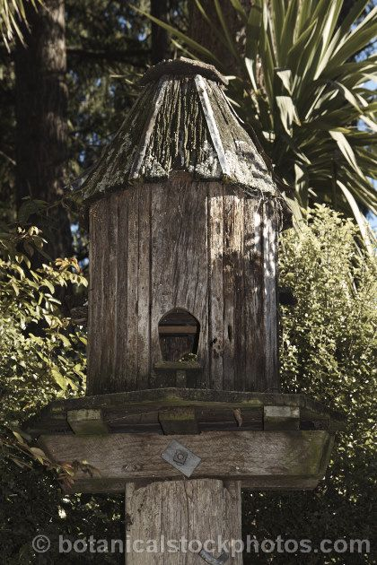 A rather elaborate wooden bird feeder and nesting box. Once weathered like this, such features can be an attractive addition to a garden.