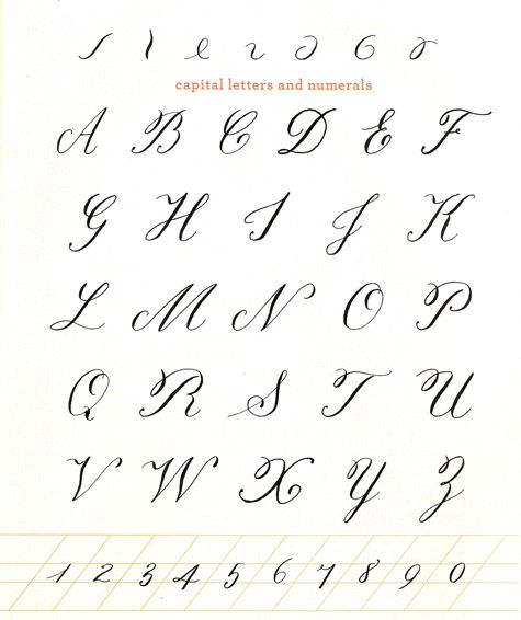 Calligraphy alphabet and on pinterest