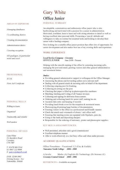 Cv Template Junior Cvtemplate Junior Template Job Resume Examples Resume Examples Simple Resume Examples