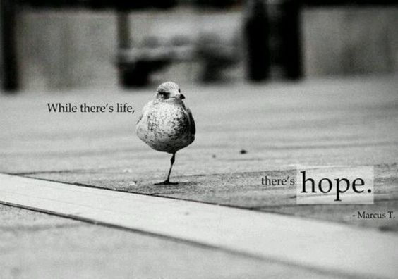 There's hope...always!!