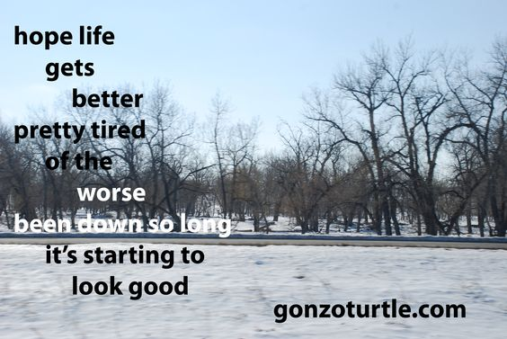 #gonzoturtle #poetry #poem #ReadThinkEvolve gonzoturtle.com