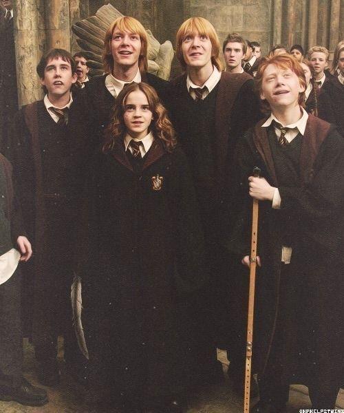 Harry Potter Memes Weasley Twins Funny Potter Twins Harry Potter Film Harry Potter Netflix Harry Potter Actors