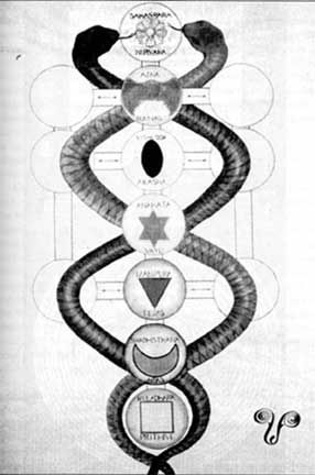 The Eastern Chakras and the Western Tree of Life, Drawn by Aleister Crowley