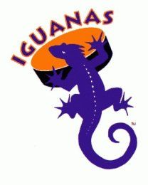 The San Antonio Iguanas were an expansion teal in the central Hockey League.