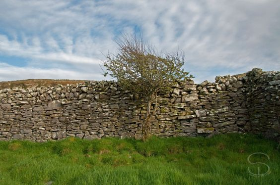 Drystone walls Lahinch/ Liscannor area, Co. Clare