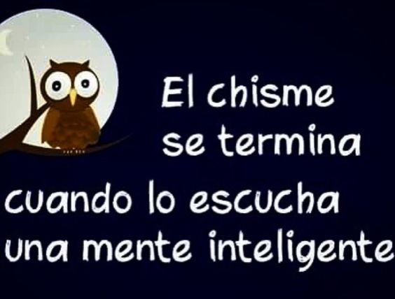 Verdad IRREFUTABLE! Me encanta!!🙏🏻💕🌹 @ednakannanvip #ednakannan #verdadabsoluta #pensamientos #pensamientospositivos #basta #stop #bulling #cyberbulling #menteinteligente #mentalidadinteligente