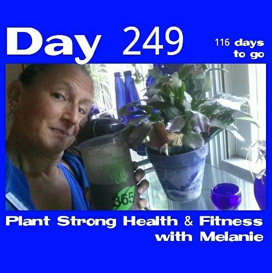 Day 249 of 365 days, 116 days to go! Back to my after workout shake houseplant tour. #superdensenutrition #houseplants  #veganchocolate #vitalbehaviors #365er #happy #GoldenScoop  #plantstronghealthandfitnesswithmelanie