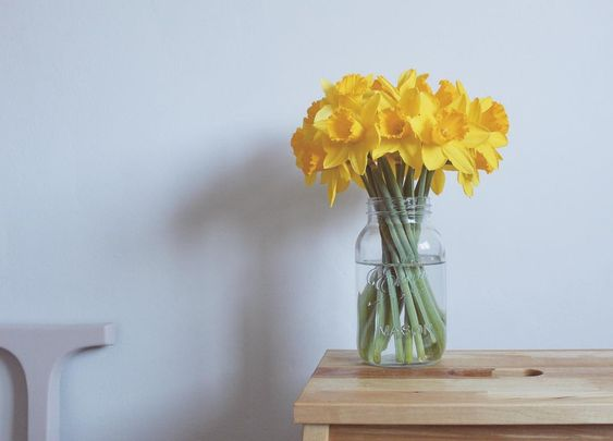 Daffodils can symbolise.. #daffodils #flower #symbol #spring #Wales #blogger #littlethings