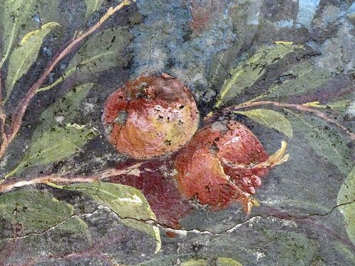 Painted Garden, Villa of Livia, detail with pomegranate: