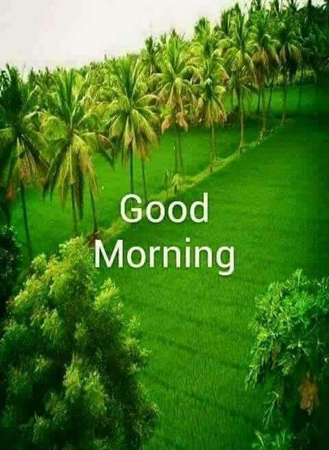 Twitter Beautiful Morning Pictures Morning Pictures Morning Greetings Quotes