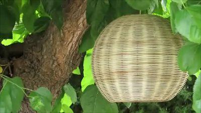 marta penina cesteria: Colección de lámparas KALIDA - Proyectos personalizados