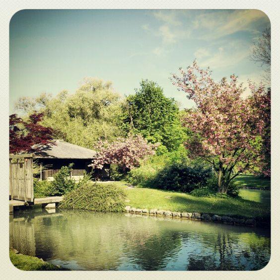 Englischer Garten Teehaus
