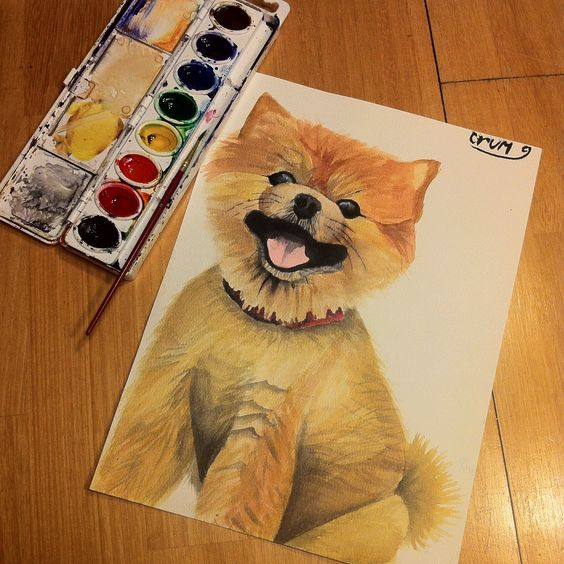 Watercolor painting of a pomeranian puppy!