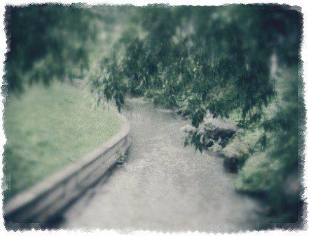 Горная река в Белокурихе.
